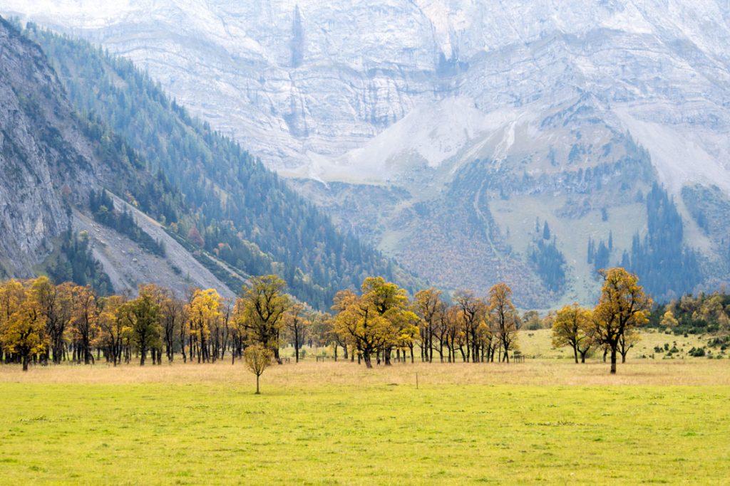 Großer Ahornboden, Hinterriß, Österreich