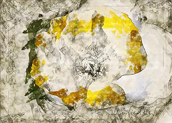 Postkarten und Kunstdrucke aus der Digitalen Grafikwerkstatt von LICHT & BILD Foto Design Winfried Hermann Röhrmoos, Dachau, München